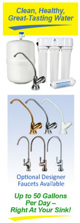 RaynePure Plus® Reverse Osmosis System